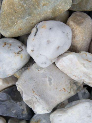 Quarz weiß-grau Gabionensteine 30 - 60mm (3 - 6cm) (nass)