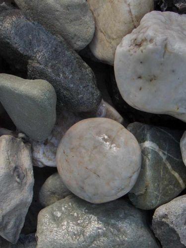 Quarz weiß-grau Gabionensteine 30 - 60mm (3 - 6cm) (naß)
