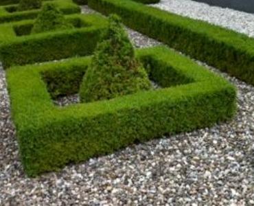 Wartungsfreier Vorgarten; eine edle Vorgartengestaltung mit Kies