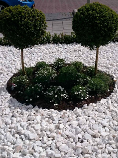 Wartungsfreier Vorgarten mit Marmor weiss splitt