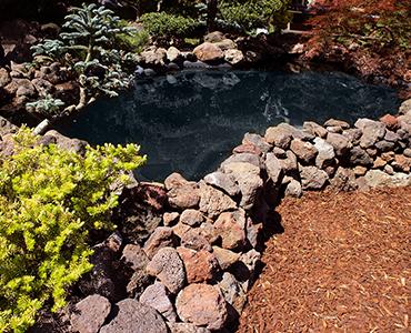 Teich mit lavamulch